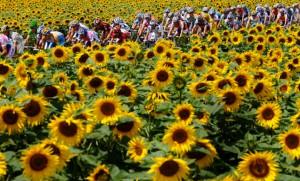 Informe de la Comisión Independiente para la Reforma del Ciclismo contra el Dopaje