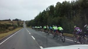 Ayer Black Sheep saco la delantera en damas y varones en Chiloe